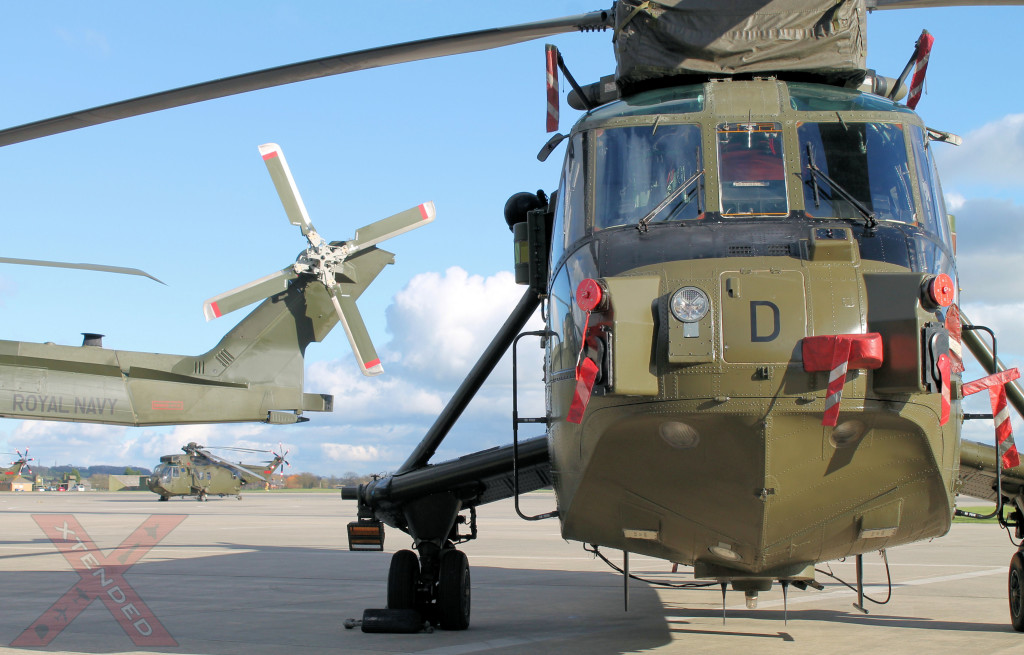 Junglie In Foreground With Merlin Mk3 Tail In View
